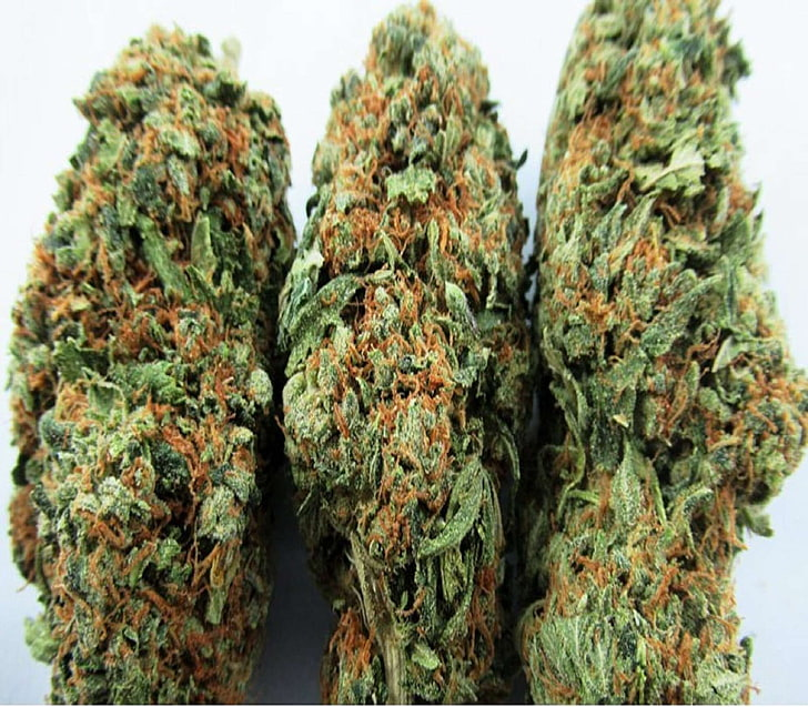 How You Can Choose To Buy Cannabis Online From Anywhere?